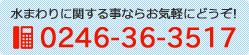 0246-36-3517
